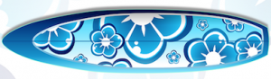 type de planche de surf squash