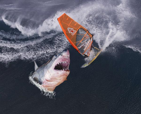 Quels sont les dangers du surf ?
