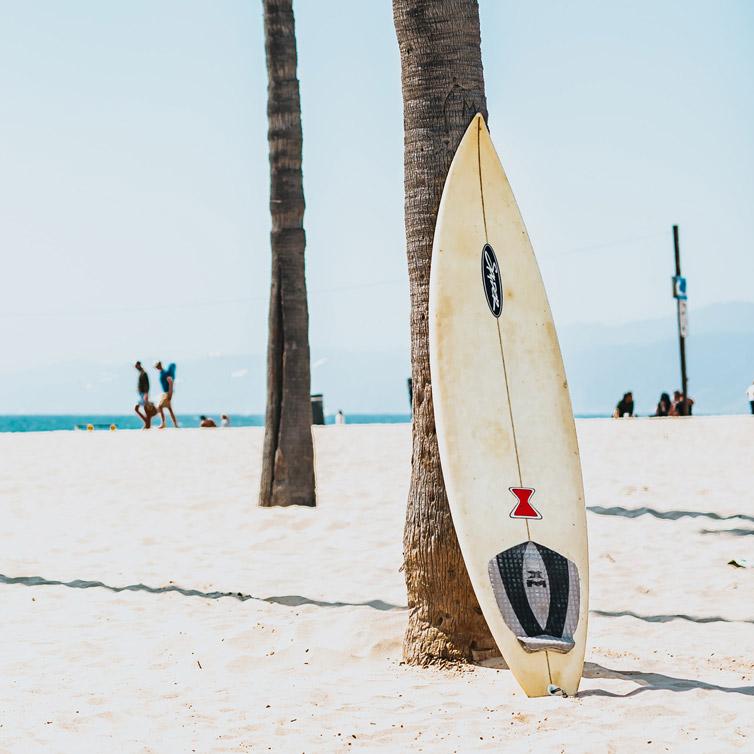 image d'une planche de surf contre un palmier