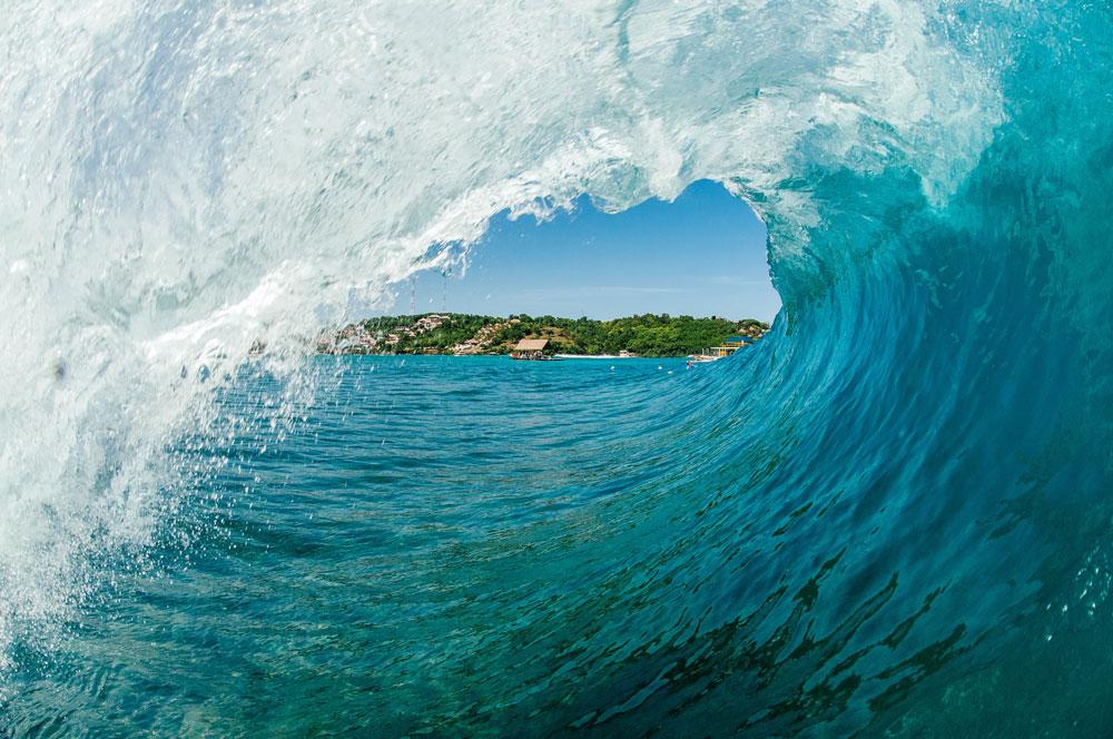 L'alimentation du surfeur : Que mangent-ils ?