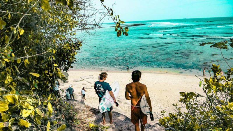 Quel est l'environnement du surfeur ?